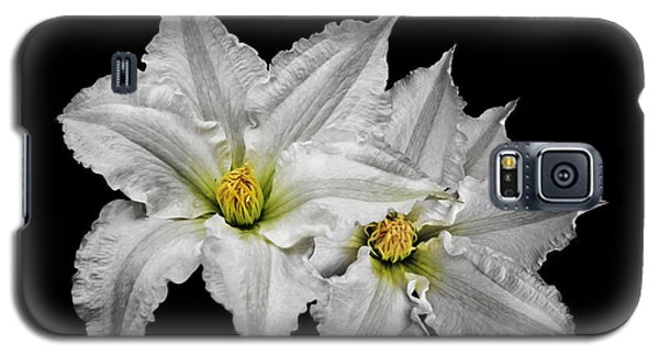 Two White Clematis Flowers On Black Galaxy S5 Case by Jane McIlroy