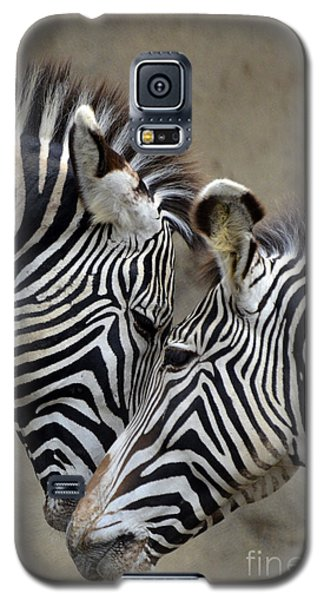 Two Zebras Galaxy S5 Case