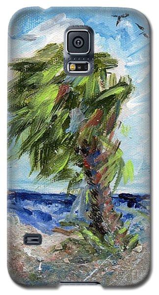 Tybee Palm Mini Series 1 Galaxy S5 Case by Doris Blessington