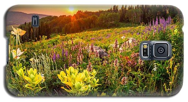 Uinta Wildflowers Galaxy S5 Case
