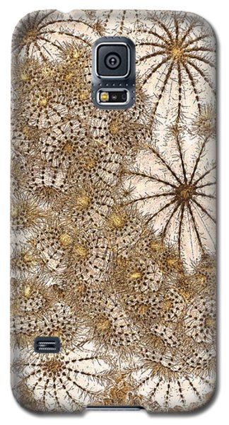 Umbrellas And Urchins Galaxy S5 Case by Liz  Alderdice