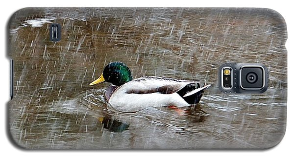 Galaxy S5 Case featuring the photograph Un Froid De Canard by Marc Philippe Joly
