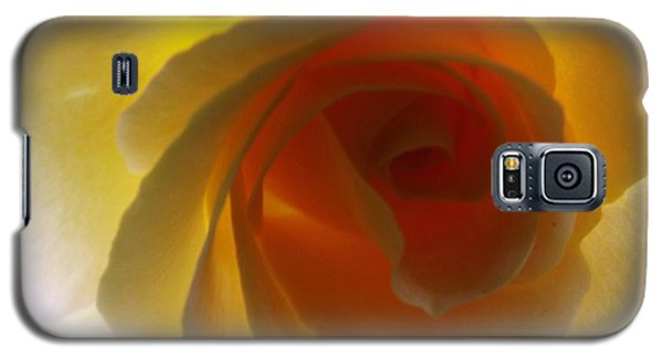 Galaxy S5 Case featuring the photograph Unaltered Rose by Robyn King