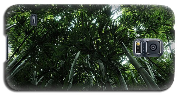 Galaxy S5 Case featuring the photograph Under The Bamboo Haleakala National Park  by Vivian Christopher
