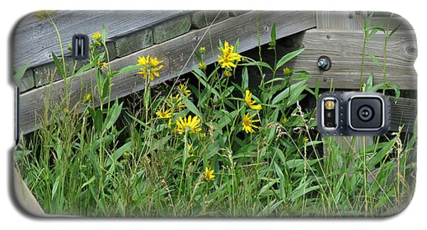 Galaxy S5 Case featuring the photograph Under The Boardwalk by Laurel Powell