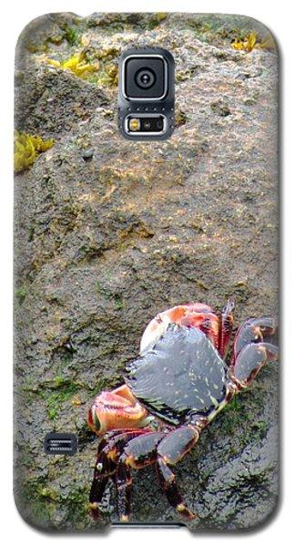 Galaxy S5 Case featuring the photograph Under The Golden Gate Bridge by Brenda Pressnall