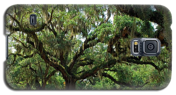 Galaxy S5 Case featuring the photograph Under The Oaks by Bob Sample