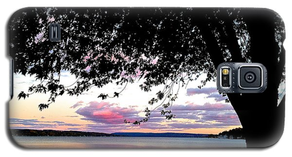 Under The Tree Galaxy S5 Case by Margie Amberge