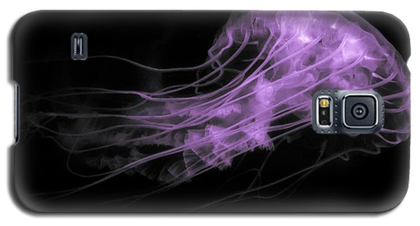 Underbelly And Tentacles Galaxy S5 Case
