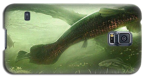 Catfish Galaxy S5 Case - Underpass by Javier Lazo