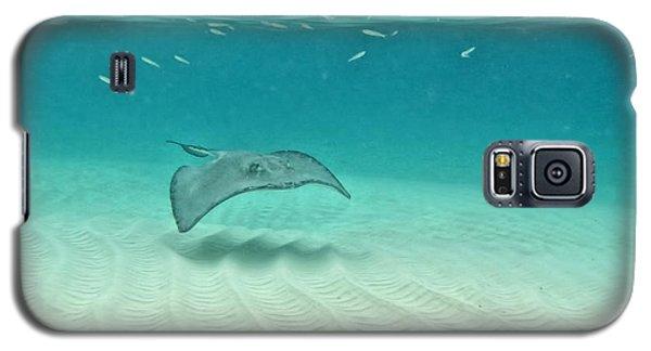 Underwater Flight Galaxy S5 Case