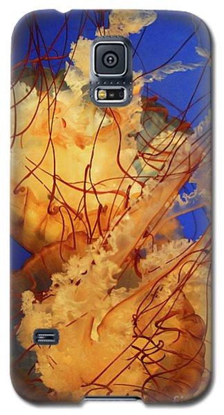 Underwater Friends - Jelly Fish By Diana Sainz Galaxy S5 Case