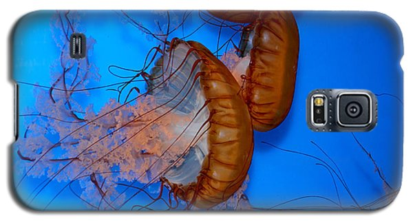 Galaxy S5 Case featuring the photograph Underwater Jellyfish by Peggy Collins