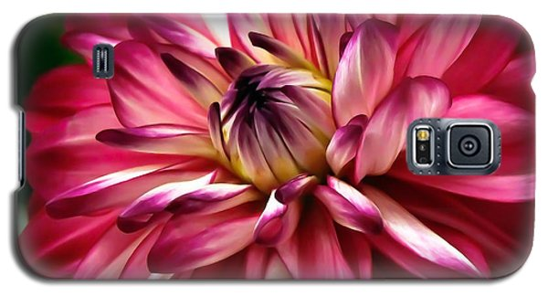 Dahlia Unfolding Galaxy S5 Case by Athena Mckinzie