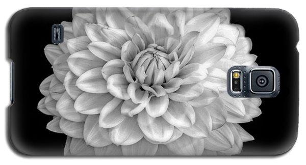 Unfolded Galaxy S5 Case