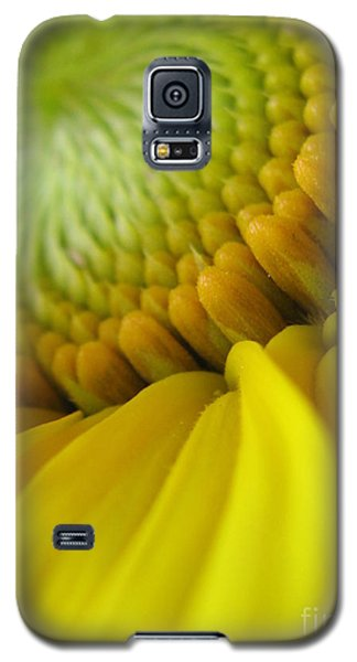 Galaxy S5 Case featuring the photograph Unity Photography by Tina Marie