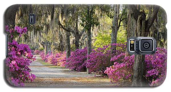 Unpaved Road With Azaleas And Oaks Galaxy S5 Case