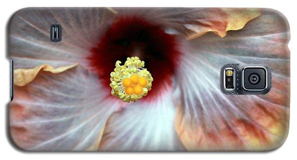 Up Close Hibiscus Galaxy S5 Case