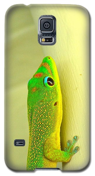 Upclose Galaxy S5 Case