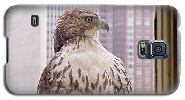 Urban Red-tailed Hawk Galaxy S5 Case by Rona Black