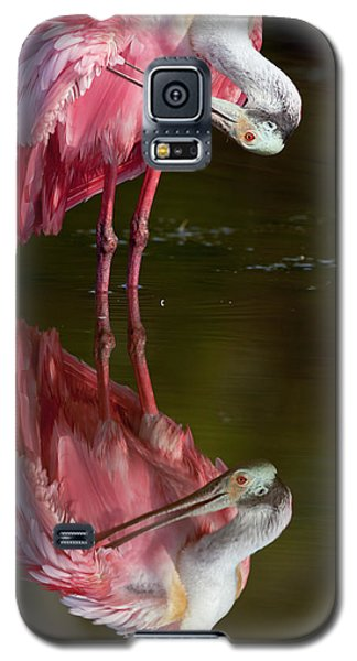 Usa, Florida, Everglades National Park Galaxy S5 Case