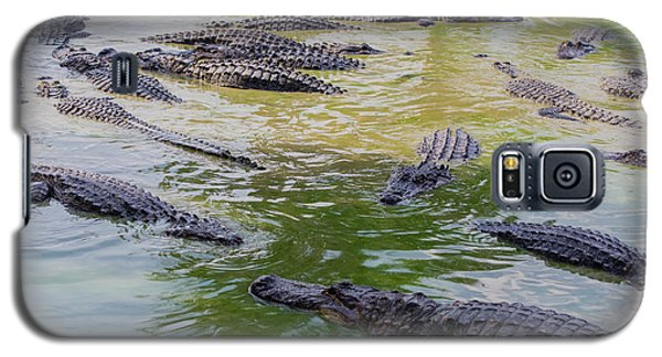 Usa, Florida, Ochopee Galaxy S5 Case by Charles Crust