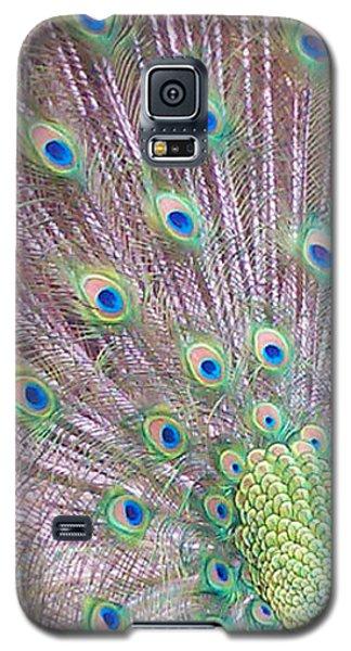 Vain Galaxy S5 Case