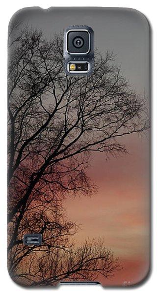 Valentine Day Sunset Galaxy S5 Case