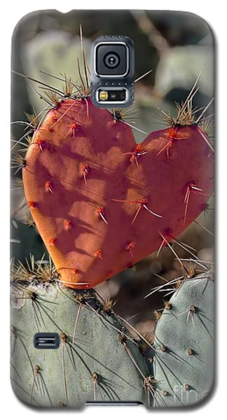 Valentine Prickly Pear Cactus Galaxy S5 Case by Henry Kowalski