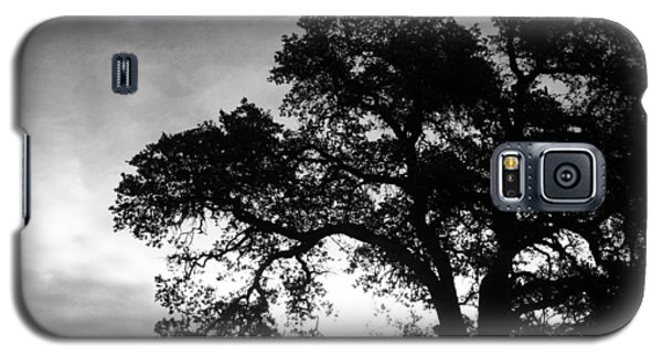Galaxy S5 Case featuring the photograph Valley Oak by Jennifer Muller