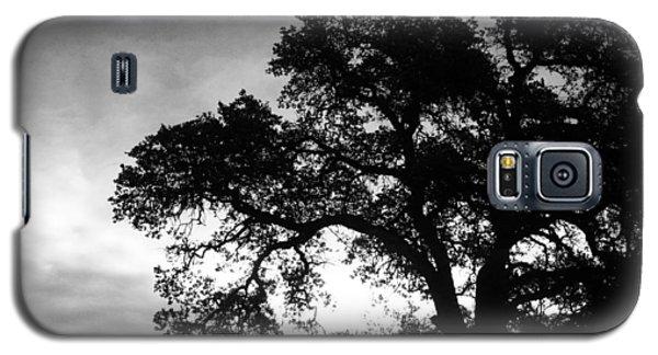 Valley Oak Galaxy S5 Case