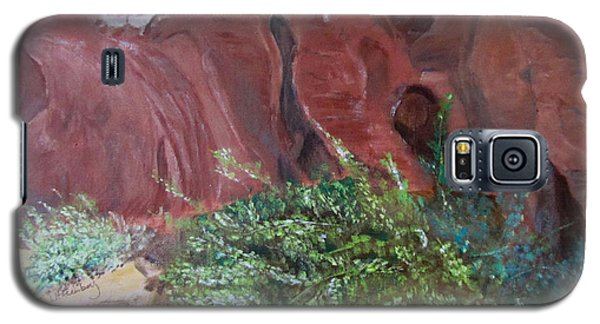 Valley Of Fire State Park Galaxy S5 Case