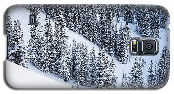 Galaxy S5 Case featuring the photograph Valley Of Pines by The Forests Edge Photography - Diane Sandoval