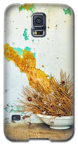 Vase On Wooden Floor Galaxy S5 Case by Silvia Ganora