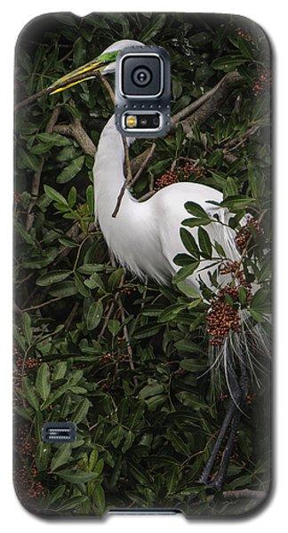 Venice Rookery Egret Galaxy S5 Case