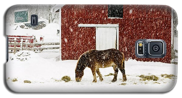 Vermont Christmas Eve Snowstorm Galaxy S5 Case by Edward Fielding