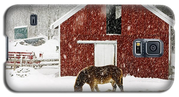 White Horse Galaxy S5 Case - Vermont Christmas Eve Snowstorm by Edward Fielding