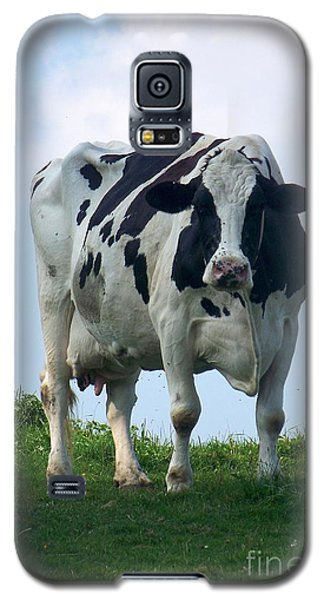 Galaxy S5 Case featuring the photograph Vermont Dairy Cow by Eunice Miller