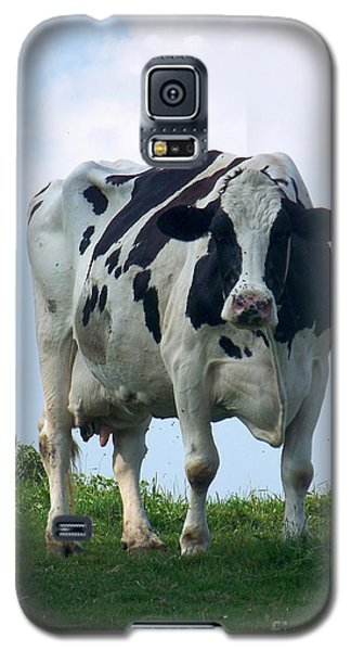 Vermont Dairy Cow Galaxy S5 Case