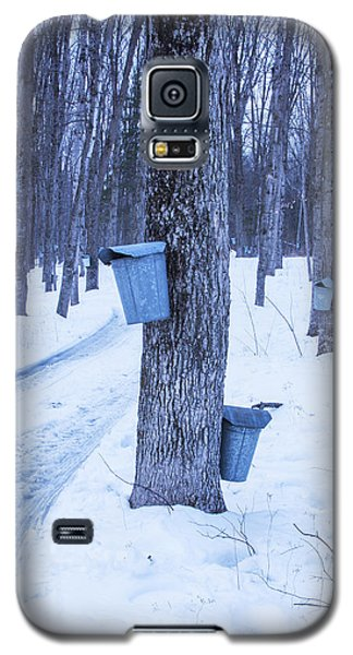 Vermont Maple Syrup Buckets Galaxy S5 Case