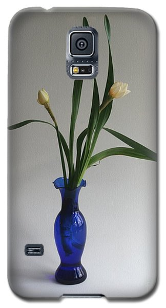 Vernal Grace Galaxy S5 Case by Patricia Overmoyer