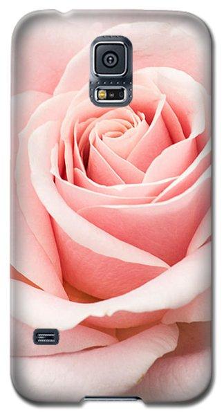 Vertical Pink Rose Galaxy S5 Case