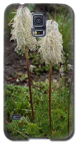 Very Wet Galaxy S5 Case