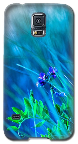 Galaxy S5 Case featuring the photograph Vetch In Blue by Adria Trail