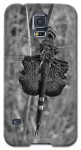 Veteran Dragon Warrior Galaxy S5 Case by Tim Good