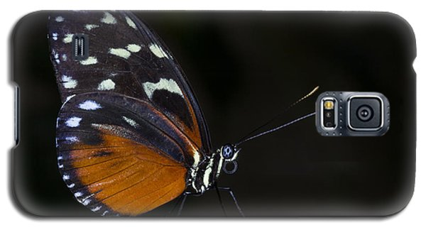 Vibrant Beauty Galaxy S5 Case