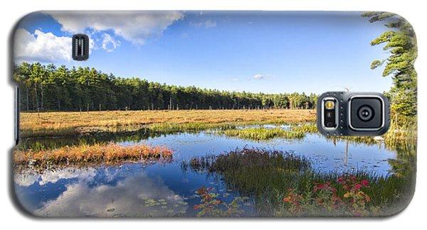 Vibrant Fall Scene Galaxy S5 Case