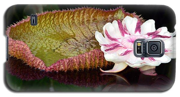 Victoria Amazonica Galaxy S5 Case