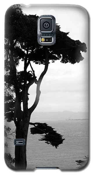 View From Alcatraz Galaxy S5 Case