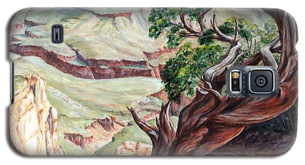View From Cedar Ridge Trail Galaxy S5 Case